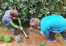 """Green Step"" Εκστρατεία Περιβαλλοντικής Ευαισθητοποίησης του Δήμου Παπάγου – Χολαργού"